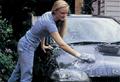 Car Wash Glove (Wax Polishing)  2
