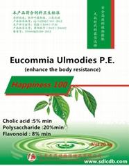 eucommia ulmodies--happiness 100