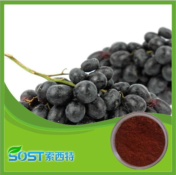 plant extract & Grape Seed for Sale Manufactory in China 5