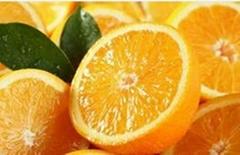 DIYTrade free sample new products orange powder sost supply