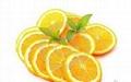 DIYTrade free sample new products orange powder sost supply 3