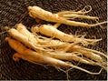 Alibaba China supply Ginseng root extract 3