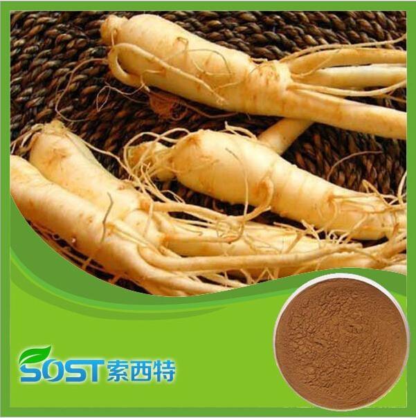 Alibaba China supply Ginseng root extract 5