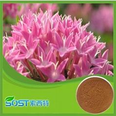 Cosmetic grade 10% Rhodiola rosea extract salidroside rhodiola rosea extract