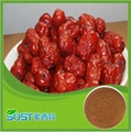 Factory supply high quality jujube extract for sale 5