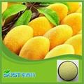 china pure natural african mango extract 2