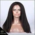 Brazilian virgin hair kinky straight