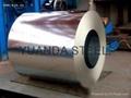 galvanized steel coils find buyer