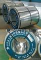 galvanized steel coils find buyer 5