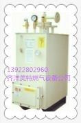 中邦150KG/H电热水浴式气化器