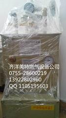 中邦300公斤電加熱電熱氣化器