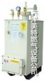 深圳中邦水浴式方形坐式200KG/H电热气化器