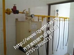 50公斤氣化器