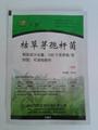 agrochemical with high quality Bacillus subtilis  2