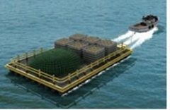 Versatile mobile barge