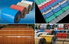 Prepainted Galvanized Steel Coil PPGI Color Coated