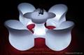 Plum table 4