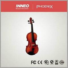 4 String Varnish Violin