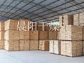 四川木材烘乾設備 2
