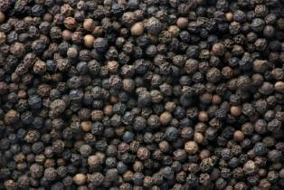 black pepper  1