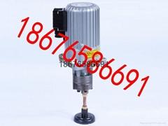供应三浪B250C自动稀油齿轮泵组