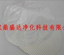 湖北武漢防靜電無塵小工帽