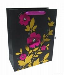 Everyday paper bag