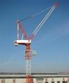 QTD luffing tower crane