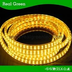 220V SMD3014 Double Row LED strip light