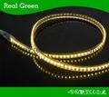 SMD2835 12V LED Strip Light