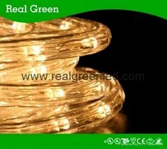 10ft 12V Warm White Chasing LED Rope Light