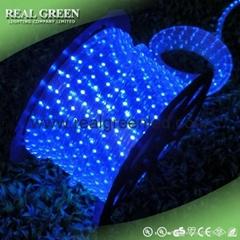 150Ft 220V 2-Wire Standard Blue LED Rope Light