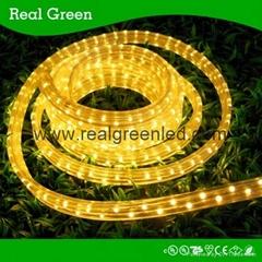 220V Flat Yellow LED Rope Light