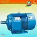 Y series AC motors