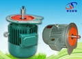 YEZ Conical Rotor Motor Three-phase