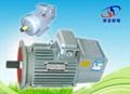 YZR Tower Crane Motor