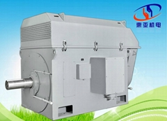 High Voltage Large Power  Induction Motor