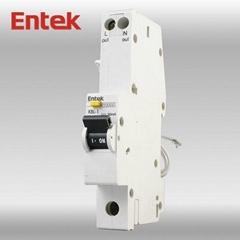 Residual Circuit Breaker CE 1P+N 20A RCBO