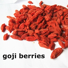 2015 new goji berries