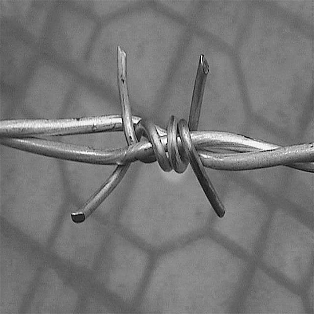 Sale! Hot Galvanised / Electric Double Twist Barbed Wire Fencing ...