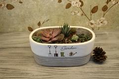 Nordic style cement flower pots