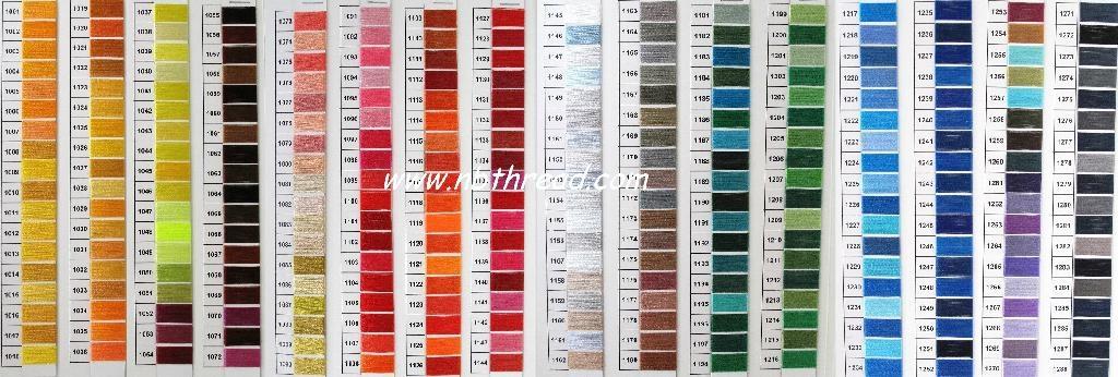 Polyester Schiffli embroidery thread 4