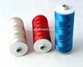 Polyester Schiffli embroidery thread