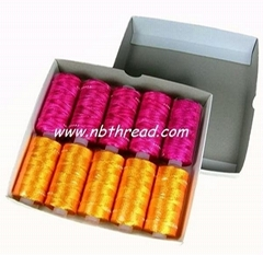 150D/2, 300D/2  Rayon embroidery Thread, 25g / tube (Hot Product - 1*)