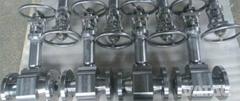 types of gate valves Bellow Sealed Globe Valve