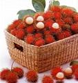 Fresh Rambutan  1