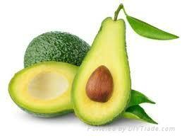 Fresh Avocado  1