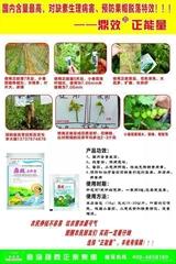 辣椒多開花防病增產專用