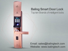 digital deadbolt lock security fingerprint gate locks manufacturer