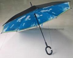 Reverse double umbrella